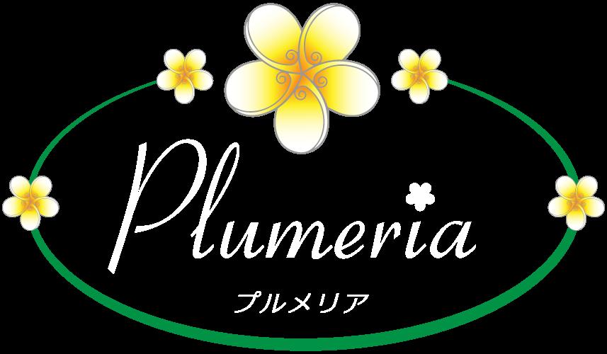 福岡粕屋美容室|美容室のプルメリア